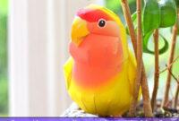 Cara-Merawat-Burung-Lovebird-Lutino-Ciri-Sifat-Pakan-Perawatan-Harga