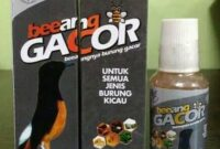 Vitamin-Beeang-Gacor