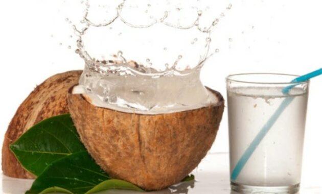 air-kelapa