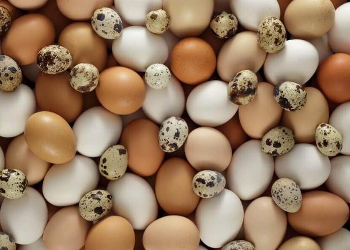 telur-rebus