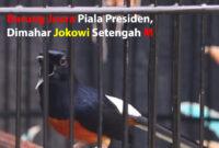 burung-juara