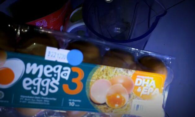 bahan-telur-omega-3