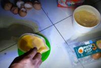 cara-membuat-extra-fooding-murai-trotol